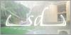 SD Kertépítés és Lakberendezés